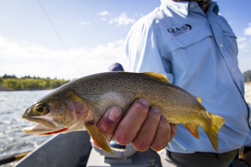 fishing in Jackson Hole, WY